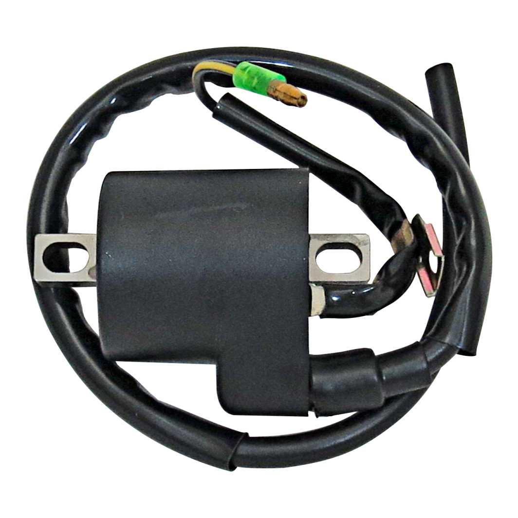 Bobina Ignição Completa POP 100 07-13
