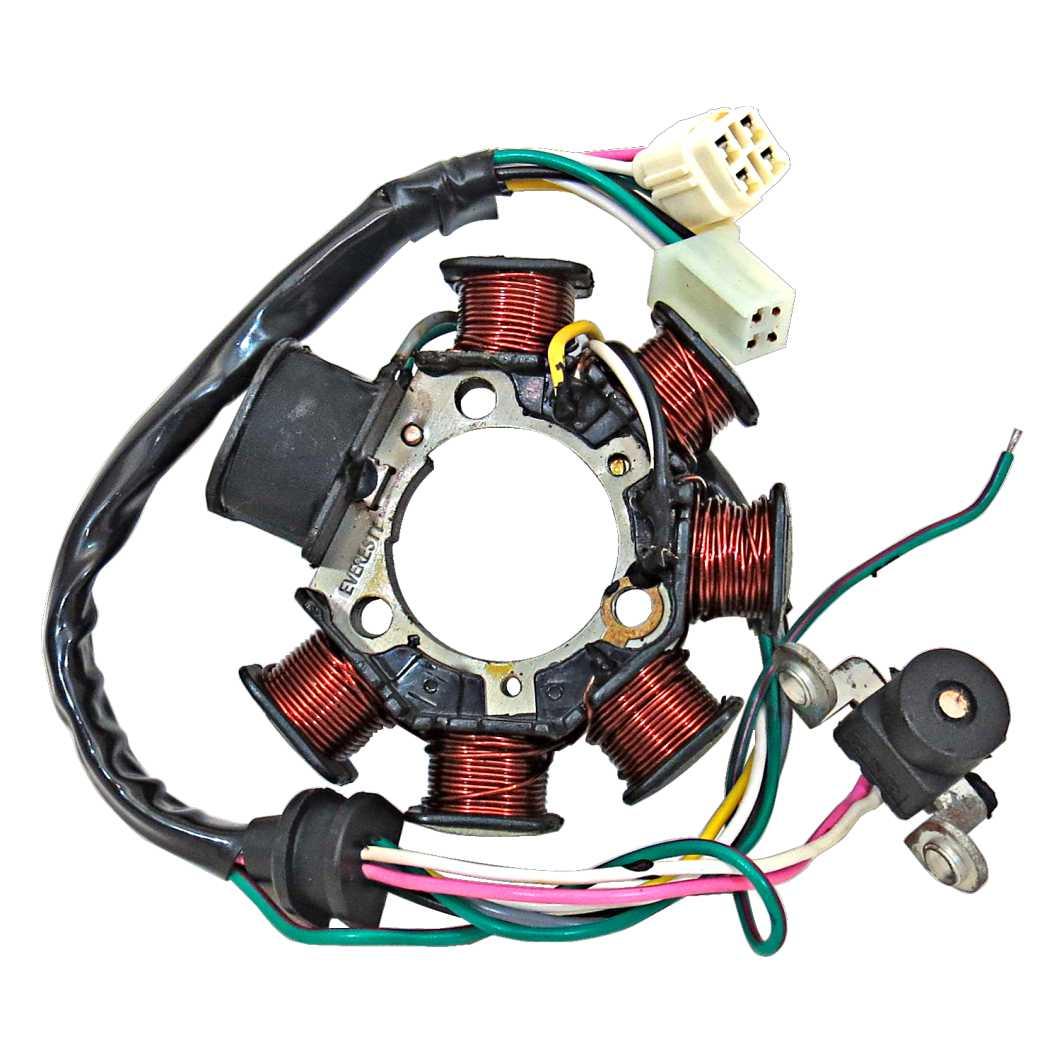 Estator Magneto Completo YBR 125 00-01